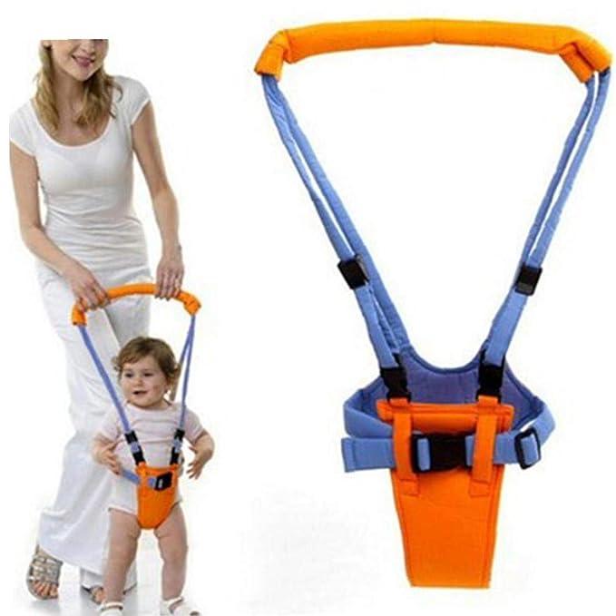 Caminante Del Bebé Del Niño Que Recorre Auxiliar Ayudante Kid ...