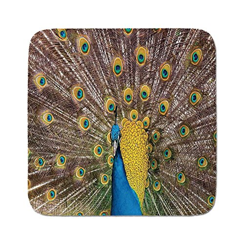 Cozy Seat Protector Pads Cushion Area Rug,Peacock Decor,Peacock Displaying Feathers Golden Vibrant Colors Eye Shaped Patterns Picture,Easy to Use on Any Surface (Peacock Feathers Displaying)