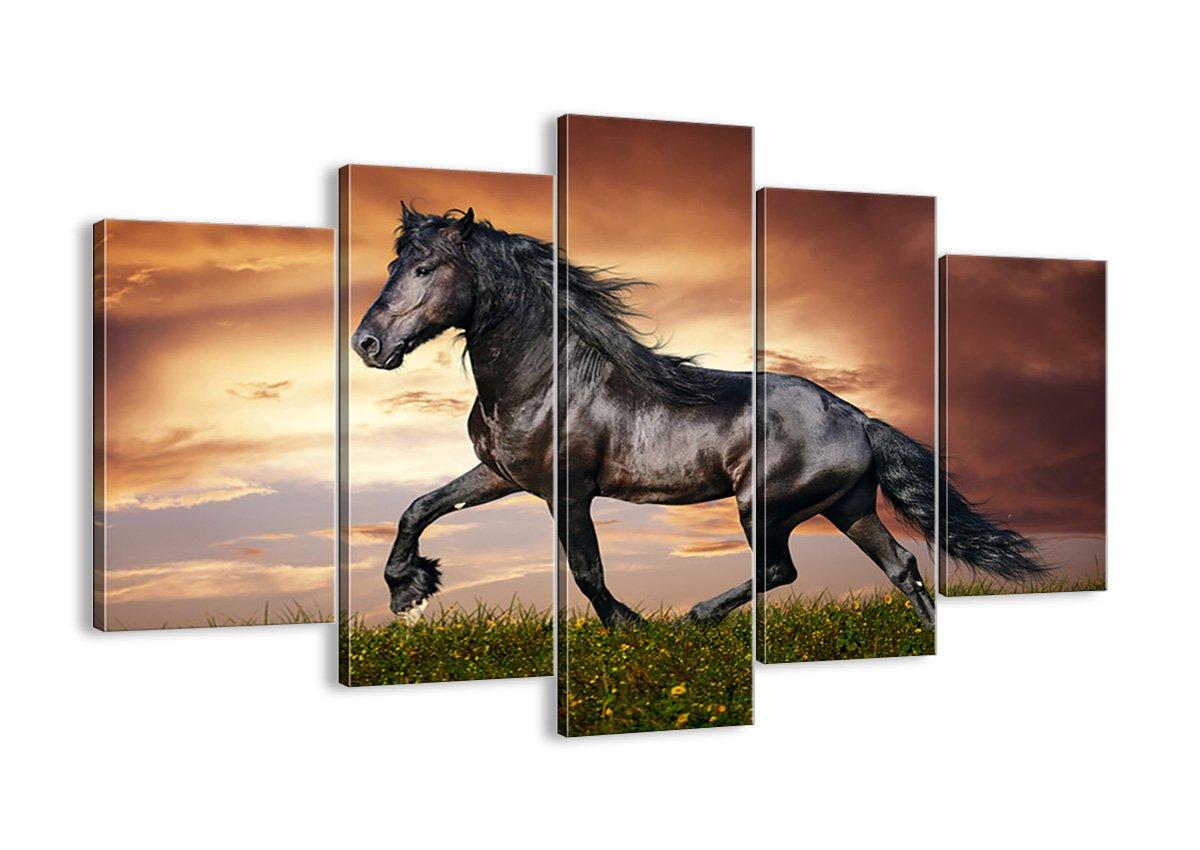 Bild auf Leinwand - Leinwandbilder - fünf Teile - Breite  150cm, Höhe  100cm - Bildnummer 2608 - fünfteilig - mehrteilig - zum Aufhängen bereit - Bilder - Kunstdruck - EA150x100-2608