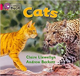 Collins Big Cat - Cats: Band 01b/Pink B