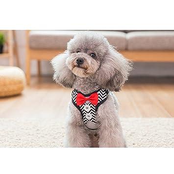 Correa para perros Teddy Bomei chaleco tipo perro cuerda perro cadena cachorro mascota suministros pequeño perro