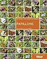 Papillons par Baliteau