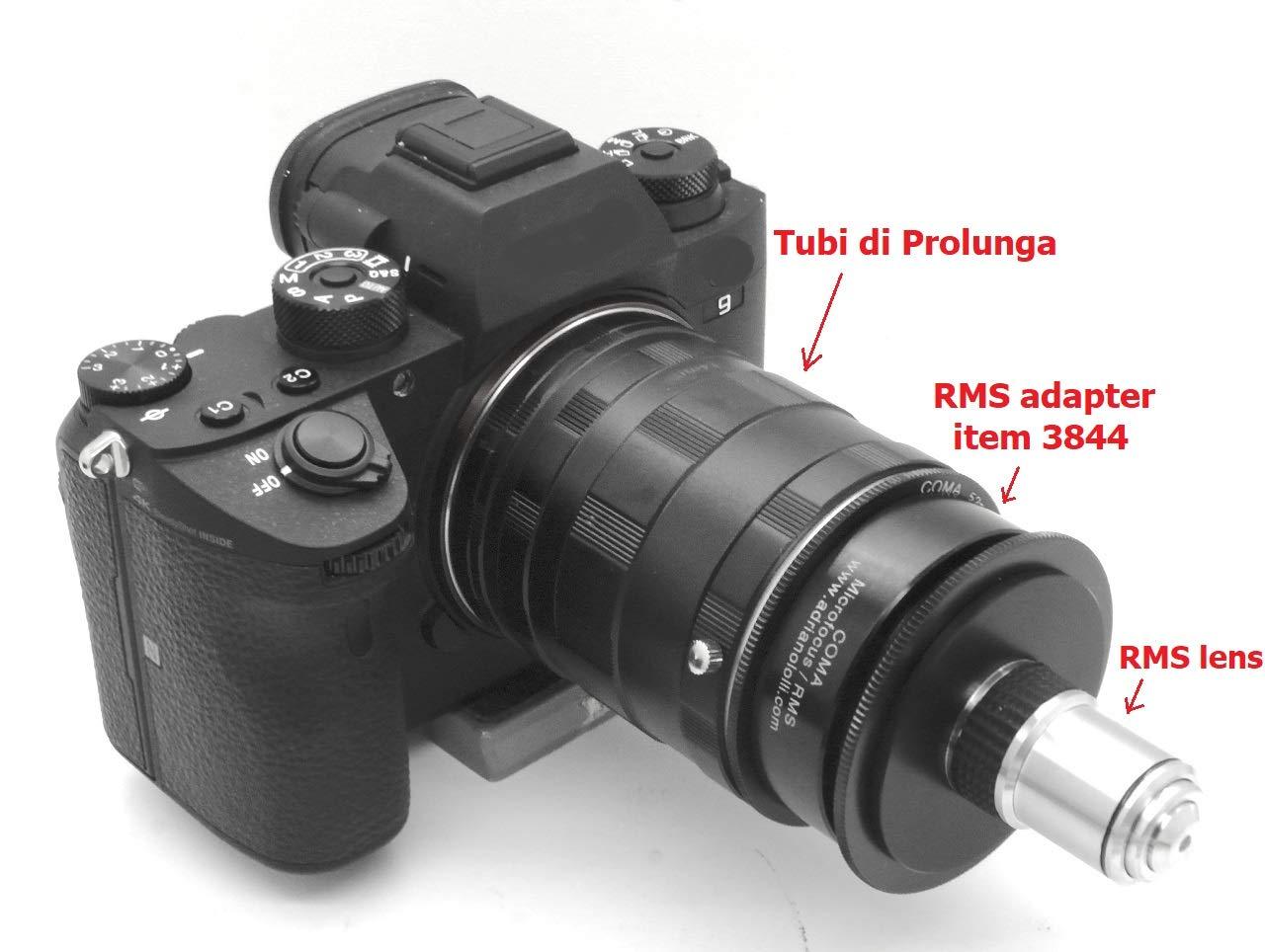 Adaptador MICROFOCUS para óptica microscopio RMS para cámara ...