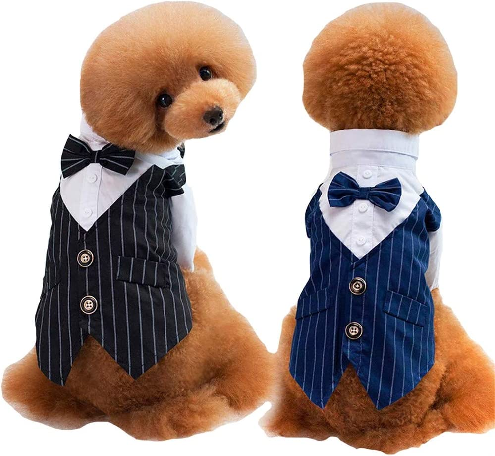 Liuliangmei Ropa para Perros Pequeños Mascota Elegante Camisa para ...