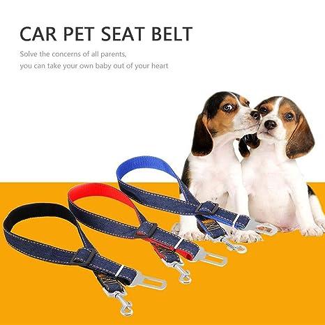 PAWACA Arnés de cinturón de Seguridad para Perro o Perro, 3 ...