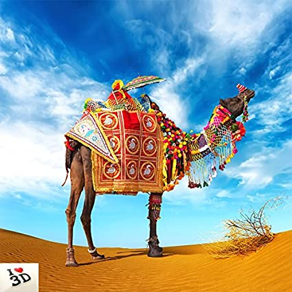 Buy Kayra Decor Camel In Desert 3d Wallpaper Print Decal