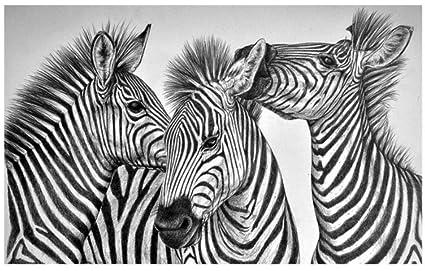Crayon Peint à La Main Dessin Noir Et Blanc Abstrait Zèbre