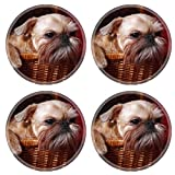 MSD Natural Rubber Round Coasters IMAGE ID: 12941790 wailful Brussels Griffon