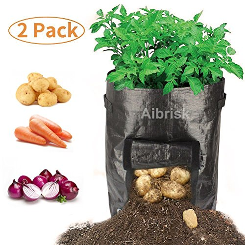 Aibrisk 2 Pack 10 Gallon Garden Potato Grow Bags Garden Planter Bags PE Tub Pouch with Handles and Access Flap, Vegetables Planter Bags for Potato, Carrot, Onion and Vegetables, Black