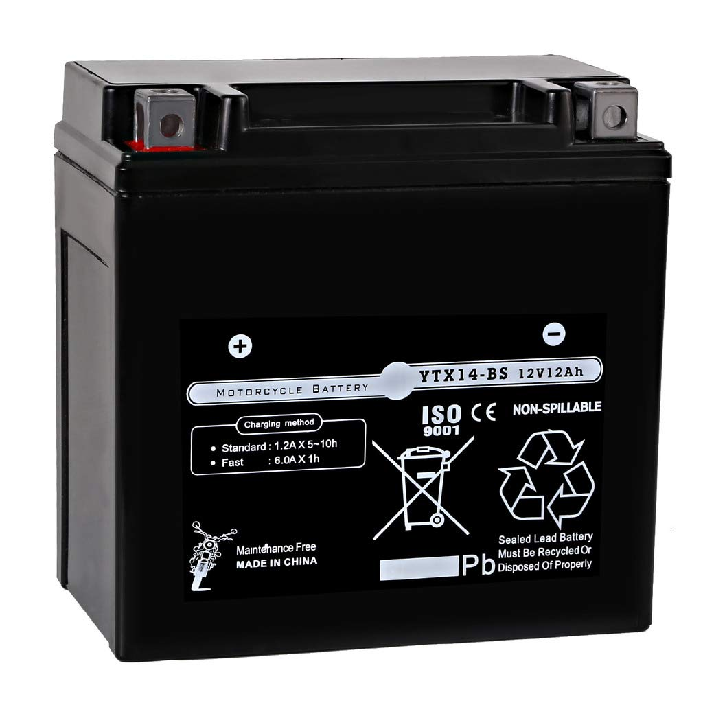 Weize ATV Battery YTX14 BS High Performance - Maintenance Free - Sealed AGM YTX14-BS For Polaris Motorcycle scooter snowmobile Batteries