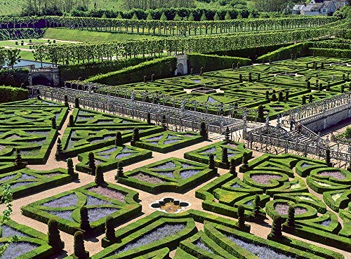(France, Photography, Villandry Chateau, garden, labyrinth, Loire Valley, formal, horticulture, flowers, travel, Europe, Art Print, Wall Art, Gift, Decor, Photo)