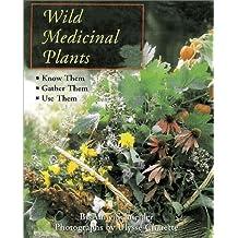 Wild Medicinal Plants by Anny Schneider (2002-04-01)