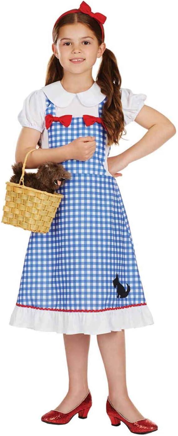 Fun Shack Azul Dorothy Disfraz para Niñas - L: Amazon.es: Juguetes ...