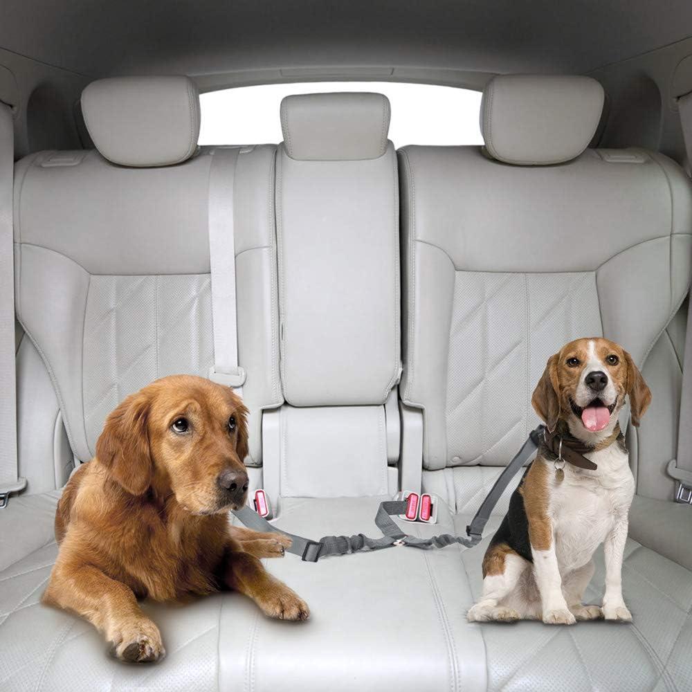 Doppel Hund Sicherheitsgurt Dual Pet Auto Sicherheitsgurt Verstellbar Mit Elastic Bungee Und Reflektierenden Streifen Keine Sicherheit Gürtel Splitter In Fahrzeug Für Zwei Pets Trip Reise Küche Haushalt