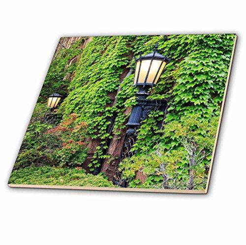 Boston Glass Floor Lamp (3dRose Danita Delimont - Massachusetts - Boston, Massachusetts. Street lamps with abundant foliage. - 6 Inch Glass Tile (ct_279034_6))