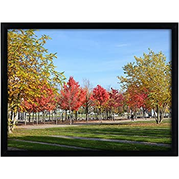 Medog 12x16 Black Picture Frame Without Mat to Display Pictures 11.81x15.75 Window Size 11.37x15.35 Safety high Transparent PC Sheet Non Glass Wall Mounting pin-Hook not Included, (PFVC 16