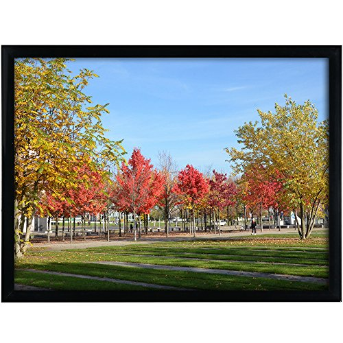 12x16 Black Picture Frame Without Mat to Display Pictures 11.81x15.75 Window Size 11.37x15.35 Safety high Transparent PC Sheet Non Glass Wall Mounting pin-Hook not Included, (PFVC 16