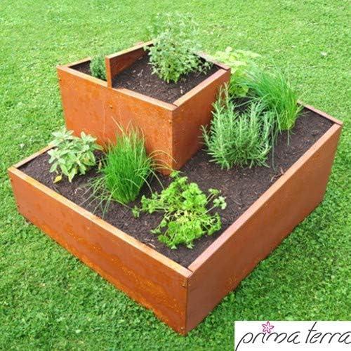 Prima Terra – Espiral de plantas aromáticas: Amazon.es: Jardín