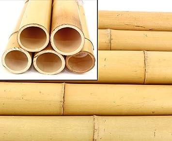 Bambusrohre kaufen amazon