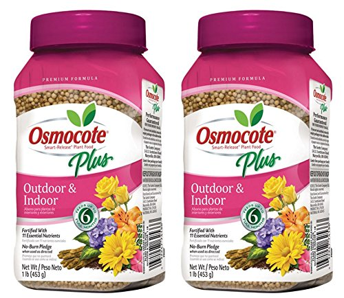 - Osmocote Plus Outdoor and Indoor Smart-Release Plant Food, 1-Pound (Plant Fertilizer) - Pack of 2