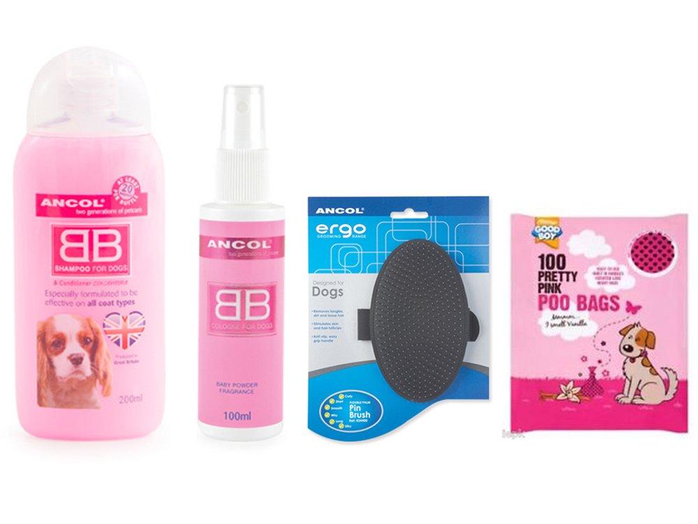 Ancol perro champú y acondicionador, perro groomers Spray (Spray de perro) perro y un cepillo de polvo de bebé y 100 rosa bolsas de caca: Amazon.es: ...
