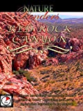 Nature Wonders - Red Rock Canyon - U.S.A.