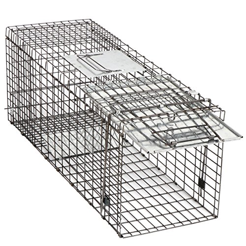HomGarden Humane Live Animal Trap 32 x 12.5 x 12 Catch Release Cage for Large Nuisance Rodents Control Raccoon Mole Gopher Opossum Skunk Groundhog Squirrel Spay Feral Stray Mouse Rabbits - Easy Set Live Animal Trap