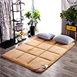 LJ&XJ Matt mat Thick Moisture proof Floor mattress Foldable Mattress topper Non-slip Hypoallergenic Mattress pads-B 180x200cm(71x79inch)