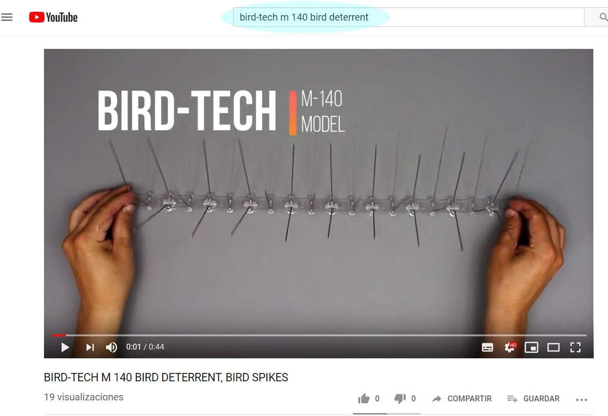 5 Mètres Pics Anti Pigeons 4 Rangées Pointes En Acier Inoxydable 3 Colle Transparent Garantie 10 Ans