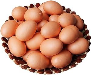 Lorigun 10pcs Artificial Egg Fake Food Faux Kitchen Decor Theater Prop