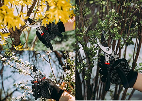 Professional Bypass Pruning Shears | Heavy Duty Garden Scissors with Non-Slip Handles | Garden Pruners, Clippers and Tree Trimmers with SK5 Sharp Blade | Bonus Gardening Gloves | Great as GlFT by GLC Star (Image #4)