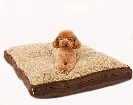 LAYBAY-Bed Mats Cama para Perros, Almohadilla de algodón ...