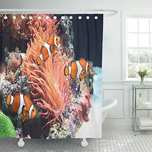 Emvency Shower Curtain Waterproof Orange Coral Sea Anemone and Clown Fish Red Reef Aquarium Anemonefish Animal Polyester Fabric 60 x 72 Inches Set with Hooks