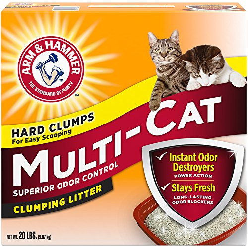 Arm & Hammer Multi-Cat Extra Strength Fresh Scent Clumping Litter 61QhgrRBSYL the pet shop nearby me The pet shop nearby me 61QhgrRBSYL