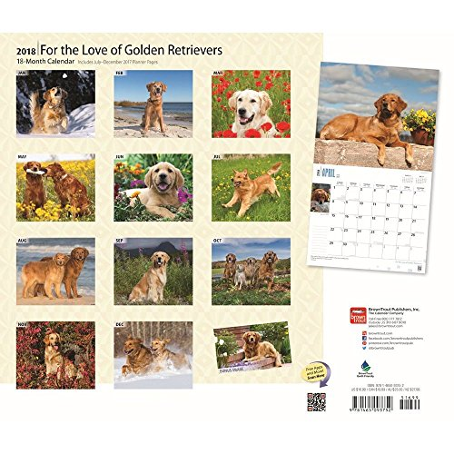For the Love of Golden Retrievers 2018 Deluxe Wall Calendar Photo #3