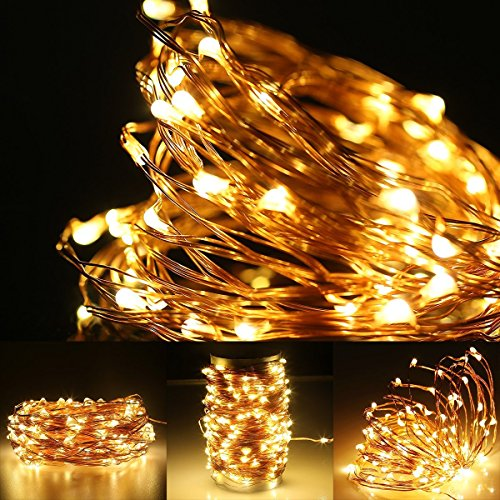 Turkey Party String Lights : LE 65ft LED String Lights, 200 LED, Copper Wire, Flexible - Import It All