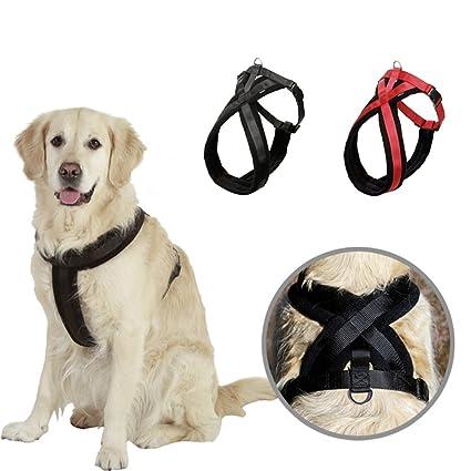 Amazon.com : NACOCO Dog Harness Pet Walking Harness with Comfortable