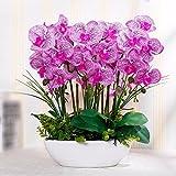 GBHNJ False Vase Pu Purple Orchid Artificial Decoration