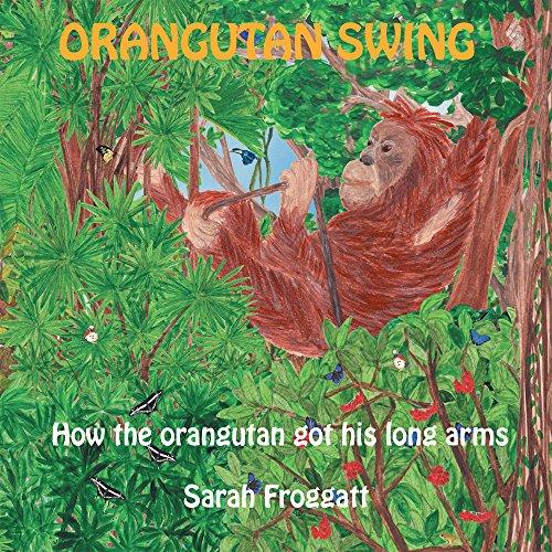 Orangutan Swings - 1