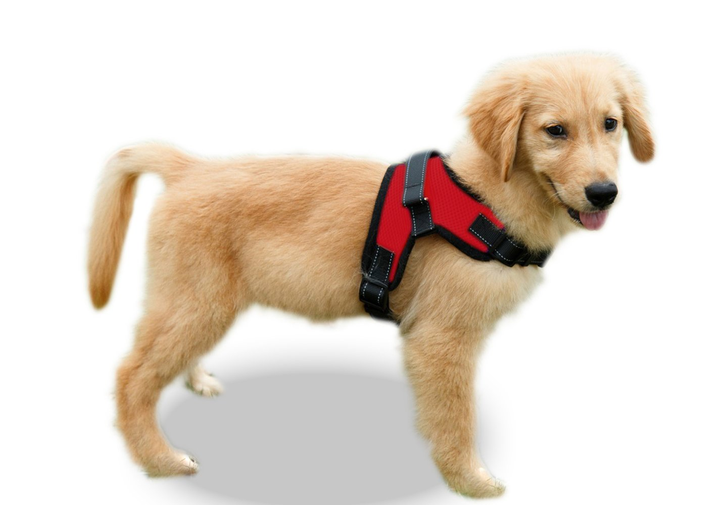 Copatchy No Pull Reflective Adjustable Dog Harness