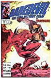 #8: DAREDEVIL #242 243 244, 247, 249, VF/NM, Wolverine, 1964, more in store, 5 issues