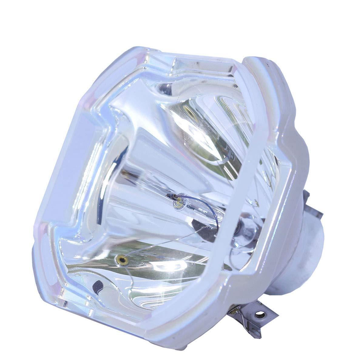 Lutema 交換用ランプ ハウジング/電球付き Panasonic ET-SLMP108用 Economy Economy Lamp Only B07KT8Q7BT