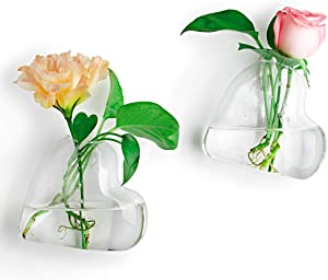 Ivolador 2PCS Wall Hanging Glass Plant Terrarium Container Heart Shape Perfect for Propagating Hydroponic Plants Home Garden Decoration Wedding