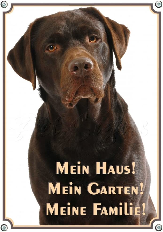 Hundeschild aus Stabiler Metallplatte Mein Haus DIN A3 Petsigns Warnschild brauner Labrador