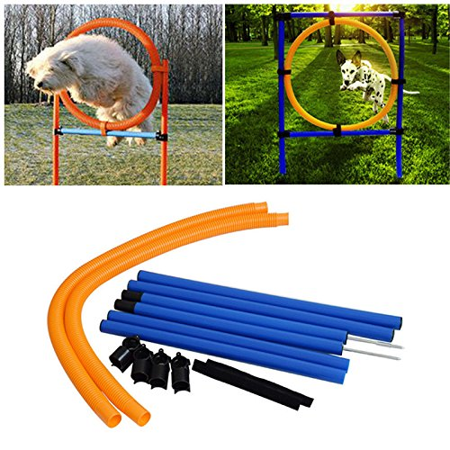 Awtang Dog Agility Training Obedience Jump Hurdle Pet Sports Equipment Training Toys Dogs High Jump Outdoor Jumping Through a Circle by awtang