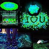 Sam4shine 200PCS Glow in The Dark Pebbles, Glow in The Dark Rocks for Outdoor Fairy Garden, Glowing Stones Decoration Gravel for Driveway, Fish Tank, Aquarium, Path, Lawn, Yard
