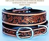 Leather Dog Collar - ProRider Large 21''- 25'' Hand Tooled Dog Puppy Collar Cow Leather Amish Made USA 6022