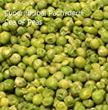 Sea of Peas