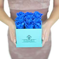 Valentine's Day Collections| Roses with Longevity (Small, Blue)