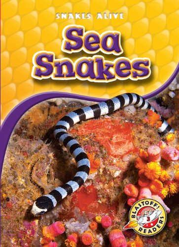 (Sea Snakes (Blastoff! Readers: Snakes Alive) (Blastoff Readers. Level 3))